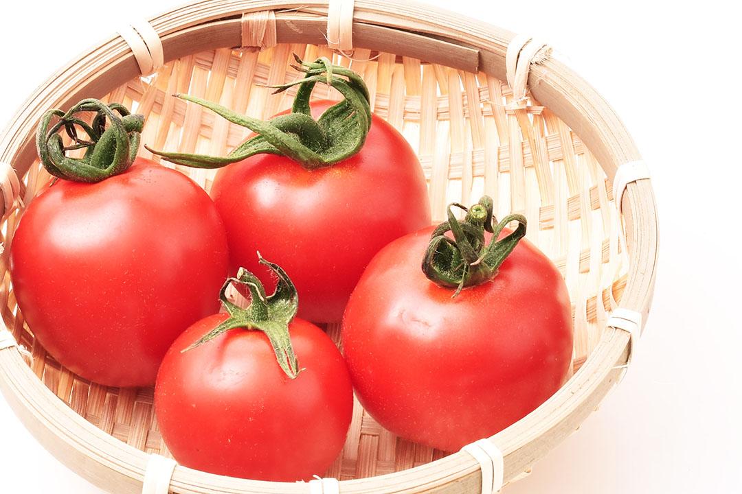 芝橋さんのフルーツトマト(徳島県産)