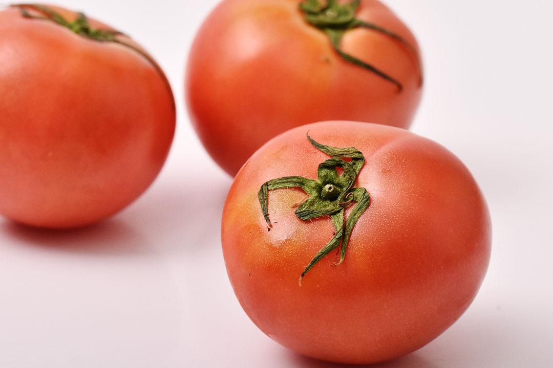 芝橋さんのトマト(徳島県産)