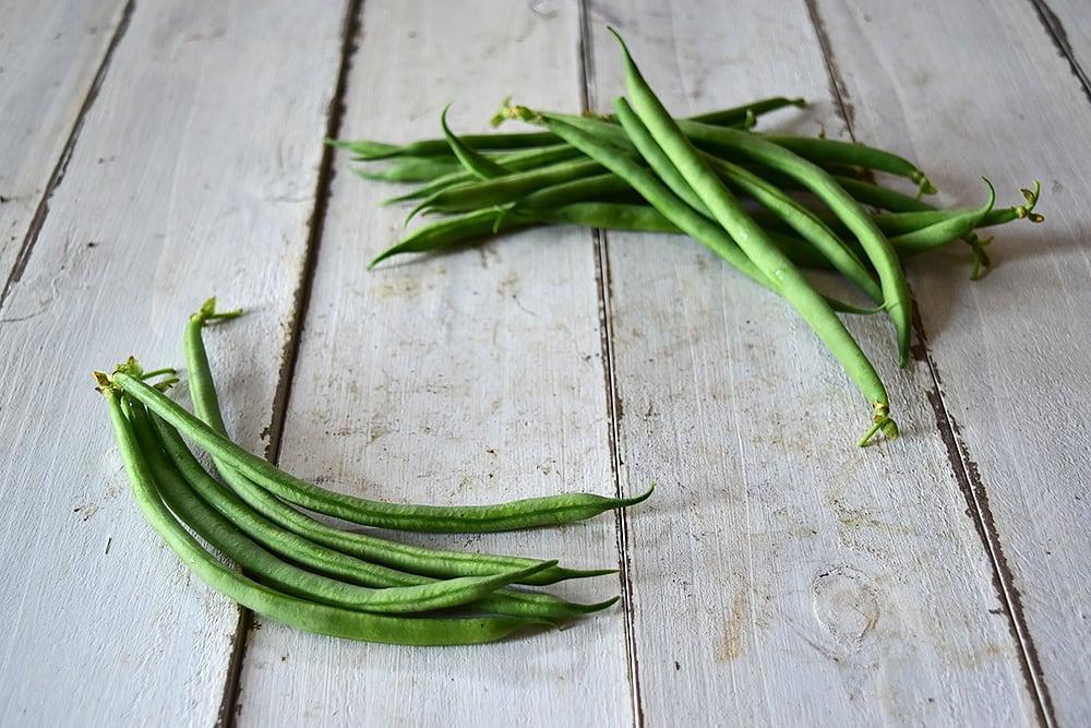 粟屋さんのインゲン豆(山口県産)
