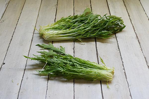 エスポワールさんの水菜(島根県産)
