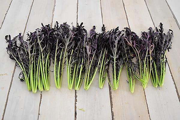Food Hub Projectさんの赤からし菜(徳島県産)