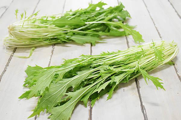 肥後やまとさんの有機水菜(熊本県産)