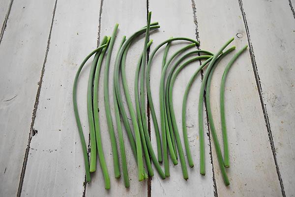 株式会社肥後やまとさんの有機にんにくの芽(熊本県産)