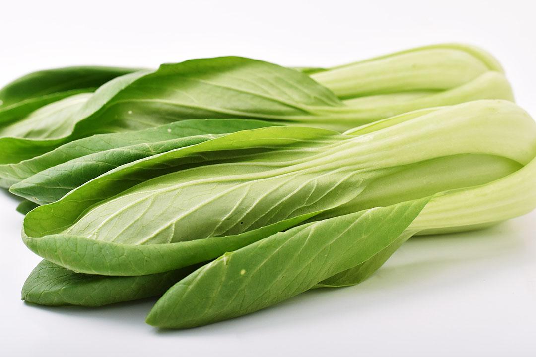 肥後やまとさんの有機チンゲン菜(熊本県産)