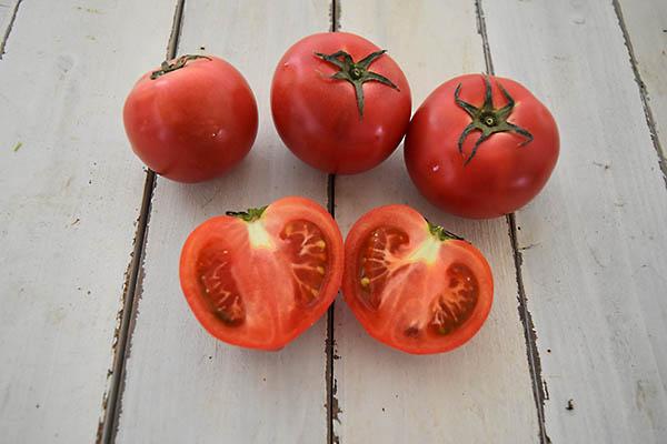 肥後やまとさんのトマト(熊本県産)
