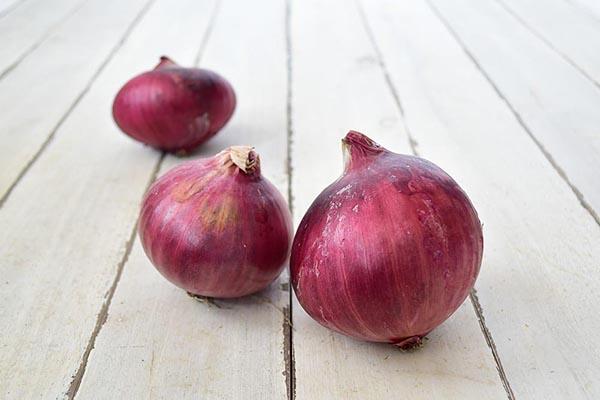 家根谷さんの紫玉ねぎ(兵庫県産)
