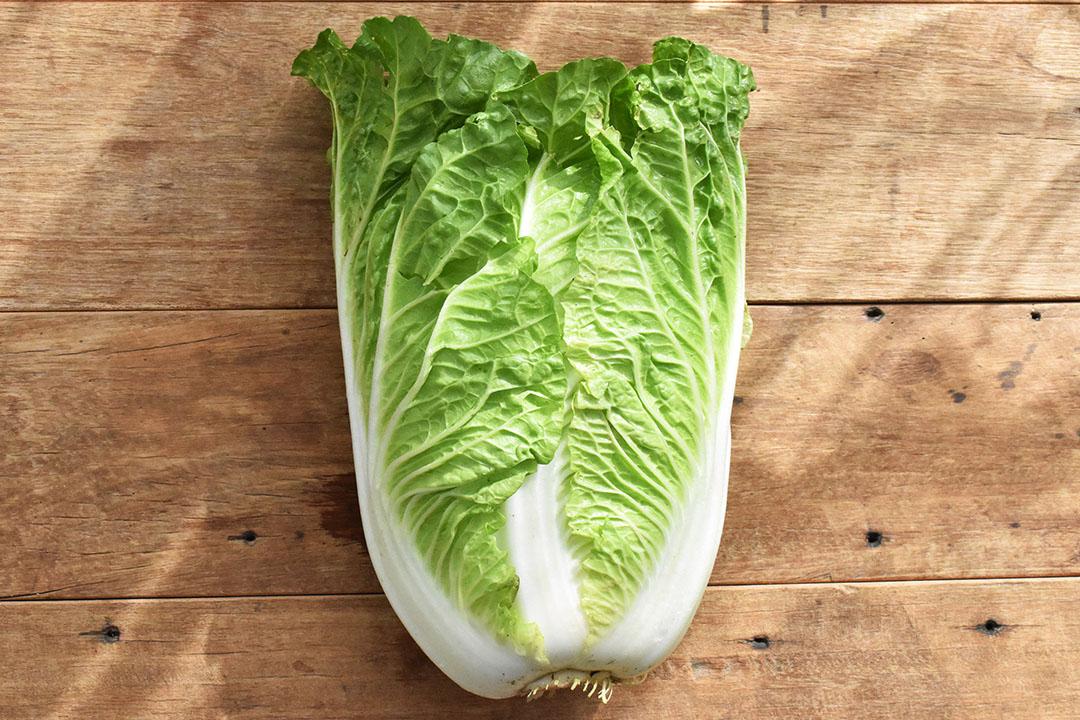 國吉さんの白菜(鳥取県産)