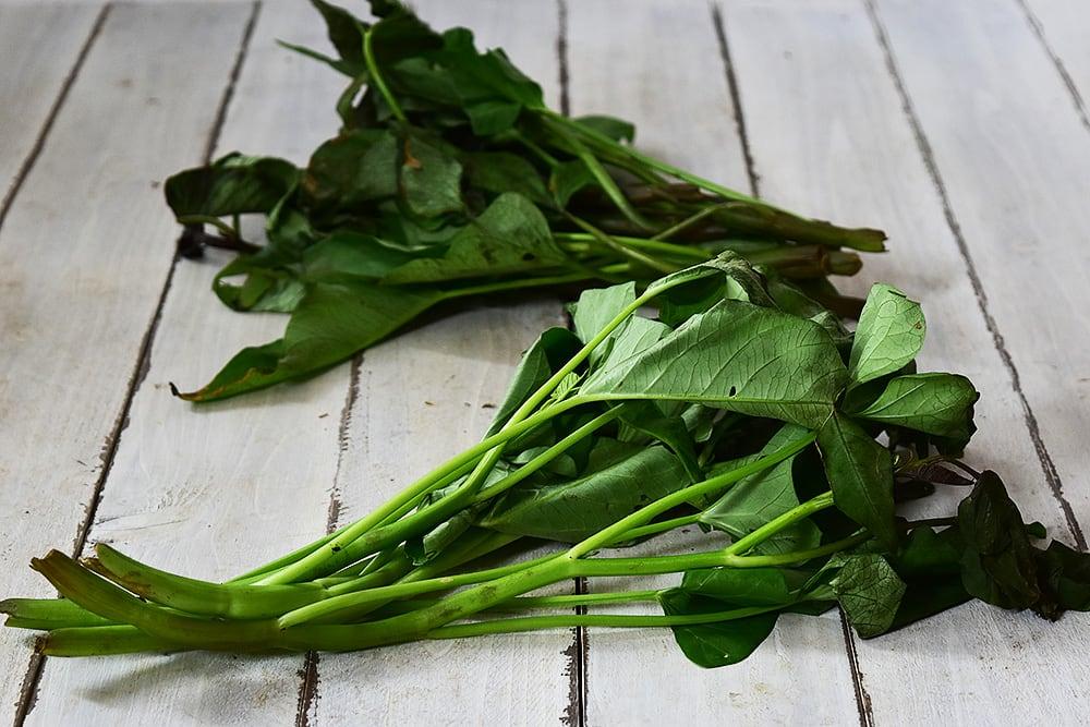馬淵さんの空芯菜(静岡県産)