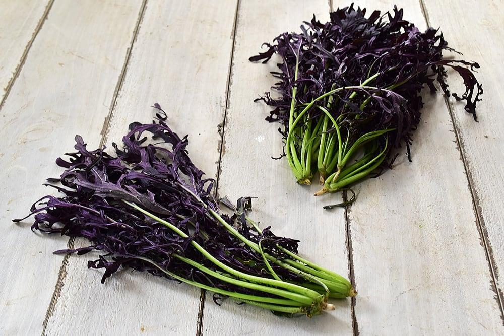 原田さんの紫からし菜(滋賀県産)