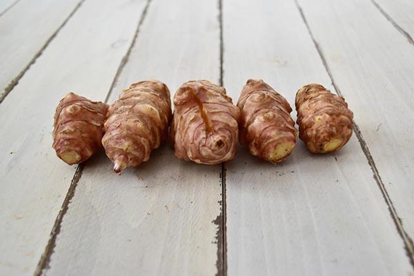 関根さんの菊芋(兵庫県産)