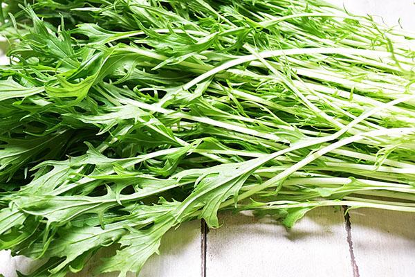 関根さんの水菜(兵庫県産)