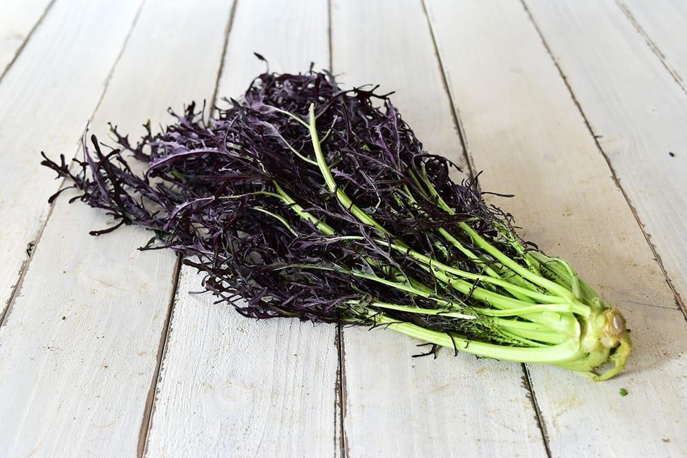 吉本さんの赤からし水菜(高知県産)