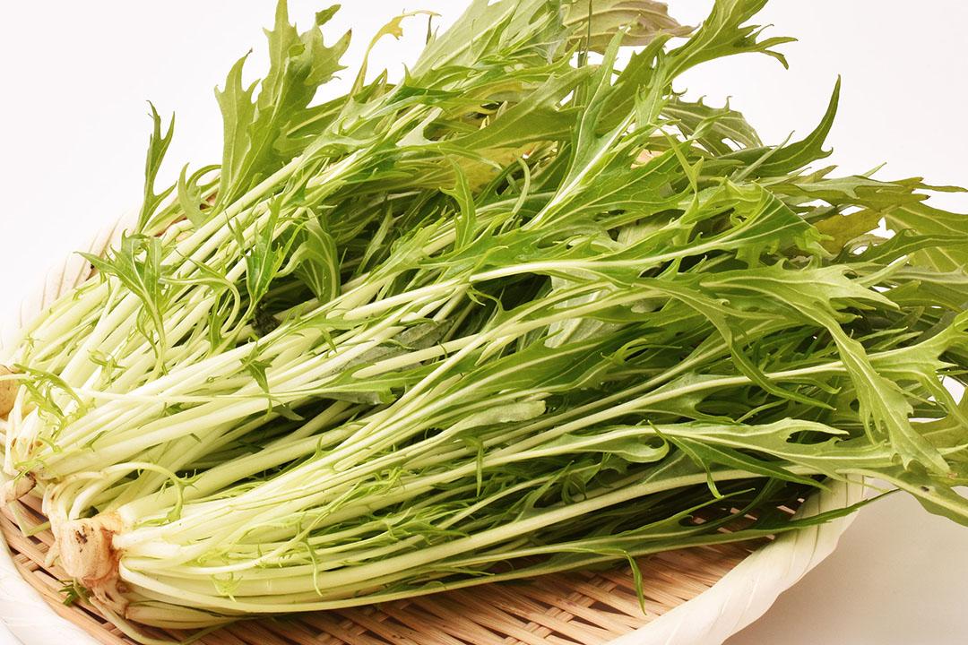 吉本さんのサラダ水菜(高知県産)