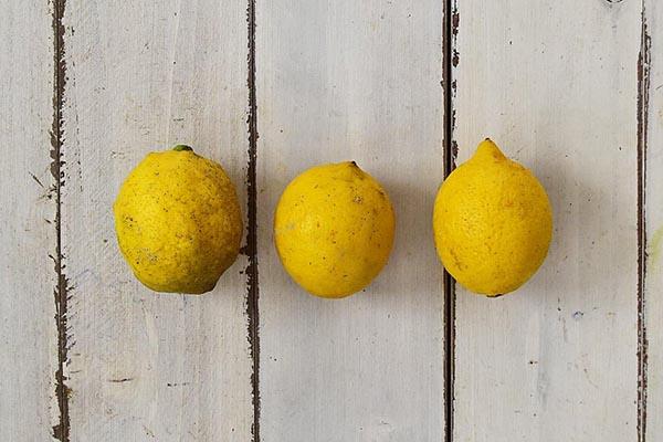 佐佐木さんのレモン(広島県産)