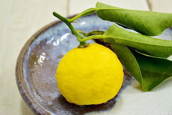 實田さんの柚子(三重県産)