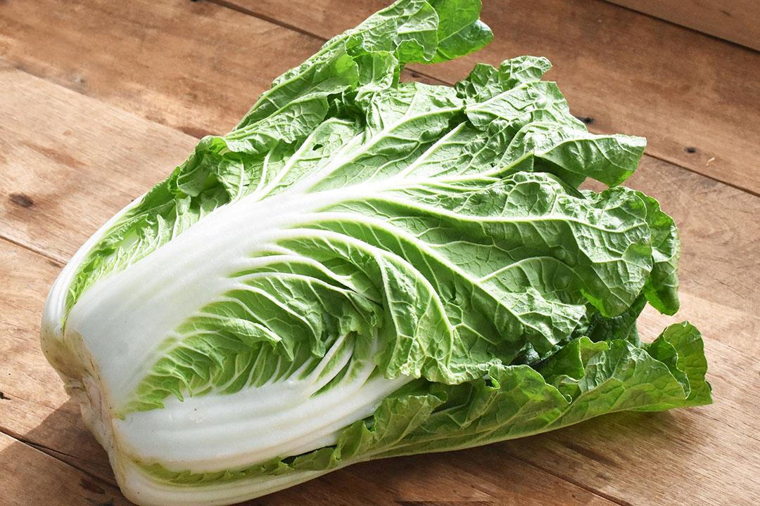 奥野さんのミニ白菜(奈良県産)