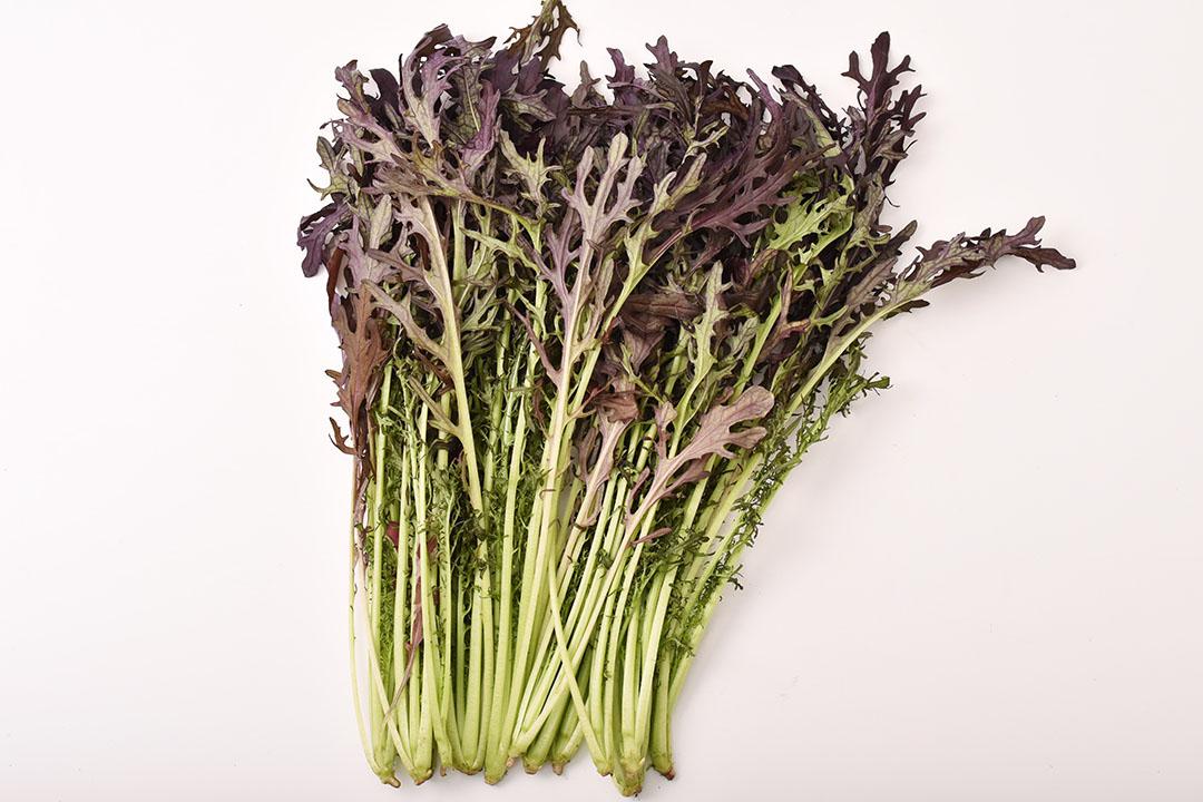 大島さんの赤からし水菜(長野県産)