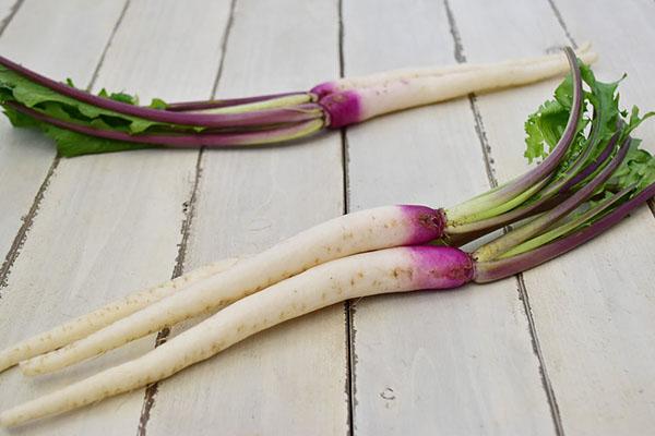 大島さんの日野菜かぶ(長野県産)
