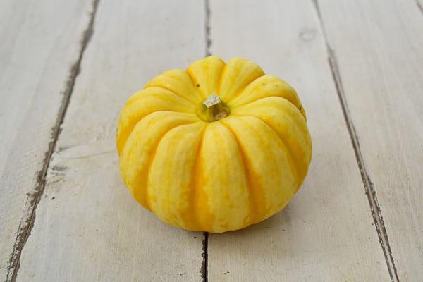 大島さんのかぼちゃ・プッチーニ(長野県産)