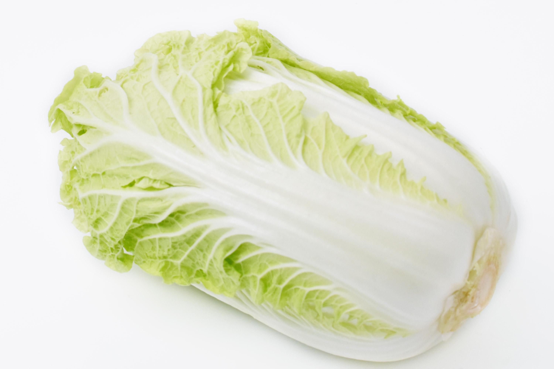 中川さんの白菜(愛知県産)