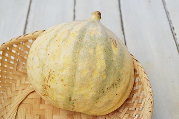 中川さんのかぼちゃ(愛知県産)