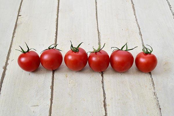 瀬戸さんのフルーツトマト(愛媛県産)