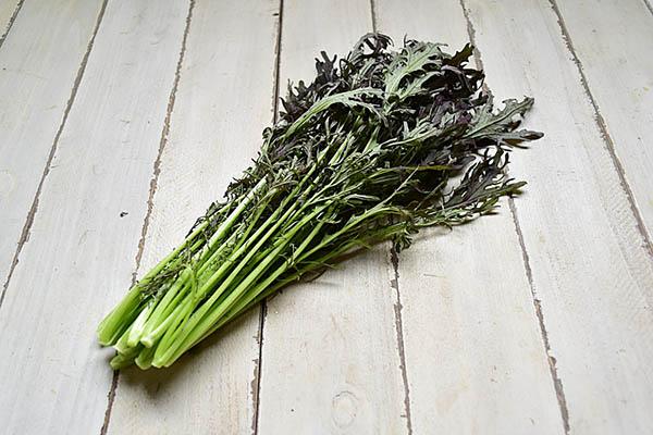 サガンベジさんの有機JASレッドからし水菜(佐賀県産)