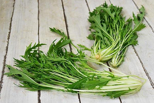 西前さんのサラダ水菜(奈良県産)