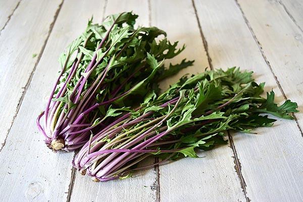宮崎さんの紫水菜(長野県産)