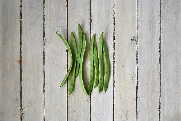 井上さんの平さやいんげん豆(岡山県産)