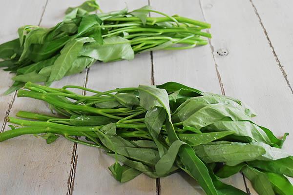 寺岡さんの有機空芯菜(広島県産)