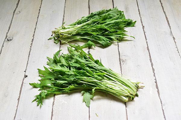戸島さんのサラダ水菜(山口県産)