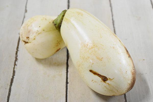 戸島さんの白丸茄子(山口県産)