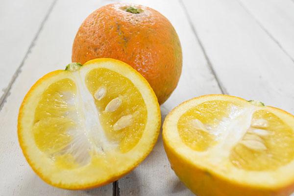 戸島さんの酢橙(山口県産)