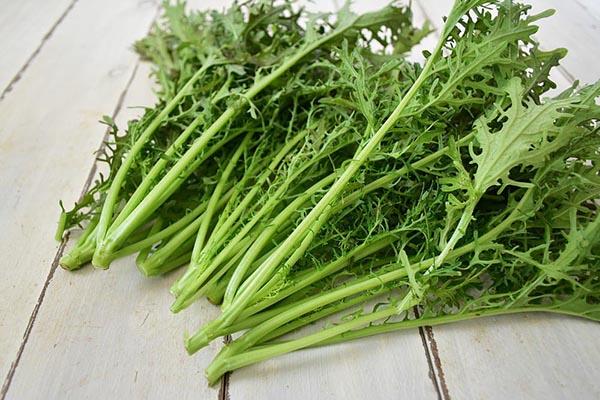山口さんの赤からし水菜(奈良県産)