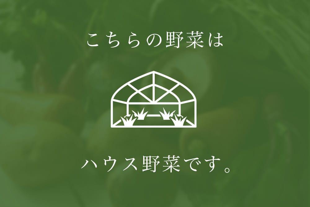 高橋さんのたばね白菜(大阪府産)