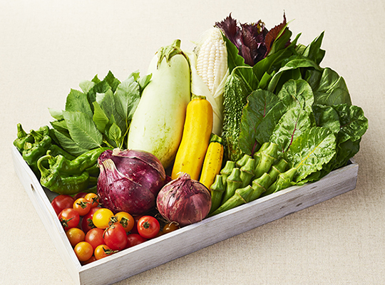 お届け可能な野菜 イメージ